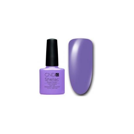Shellac Lilac Longing